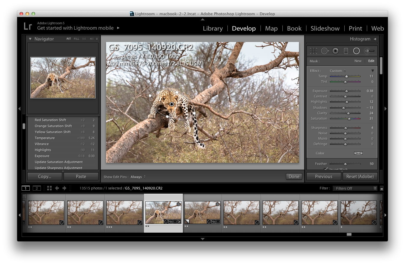 Using the Radial Filter Tool in Lightroom