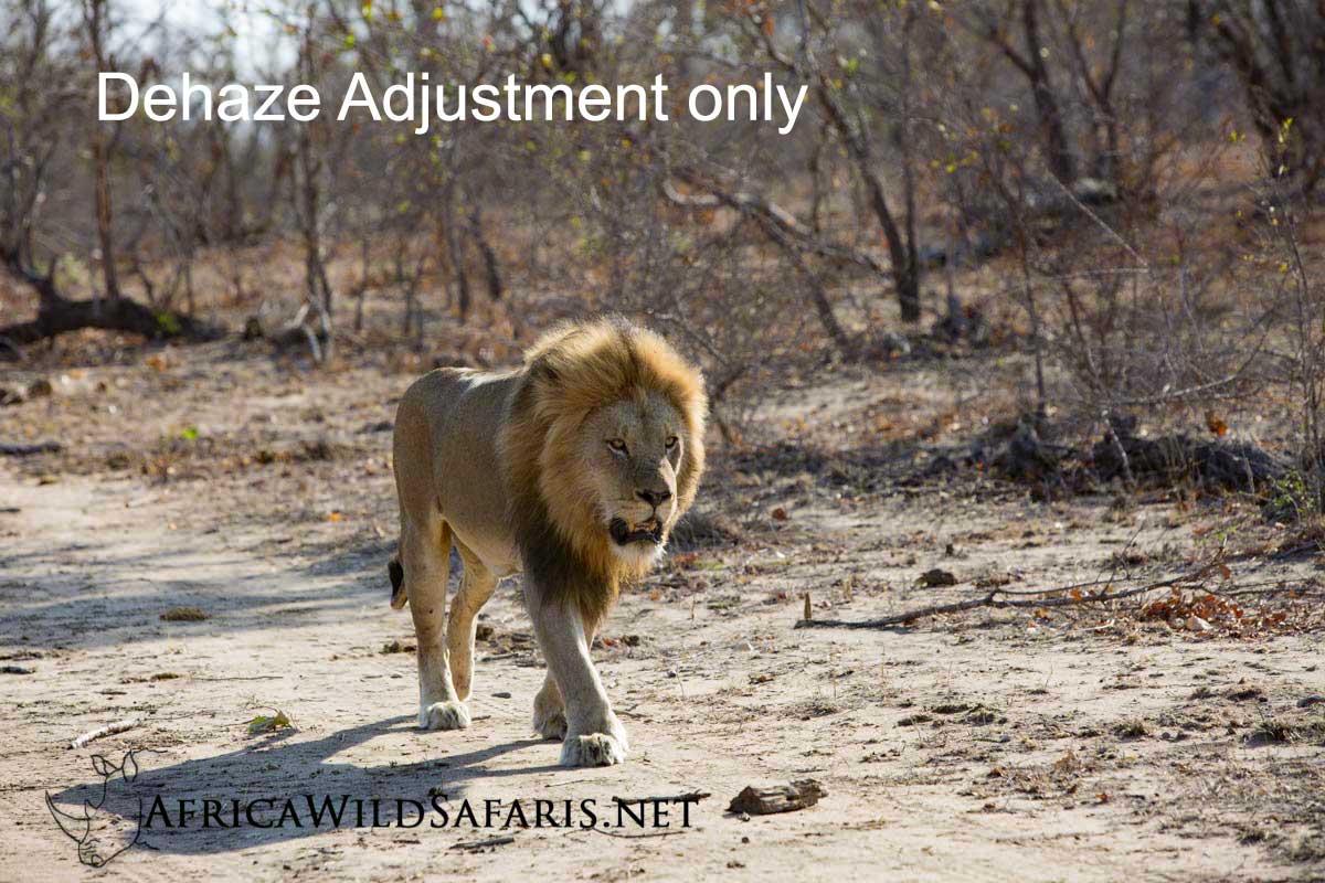 image with dehaze adjustment