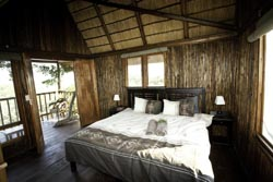 Tree House Bedroom with outside shower